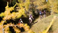 MB Tramin - Trails am Monte Roen