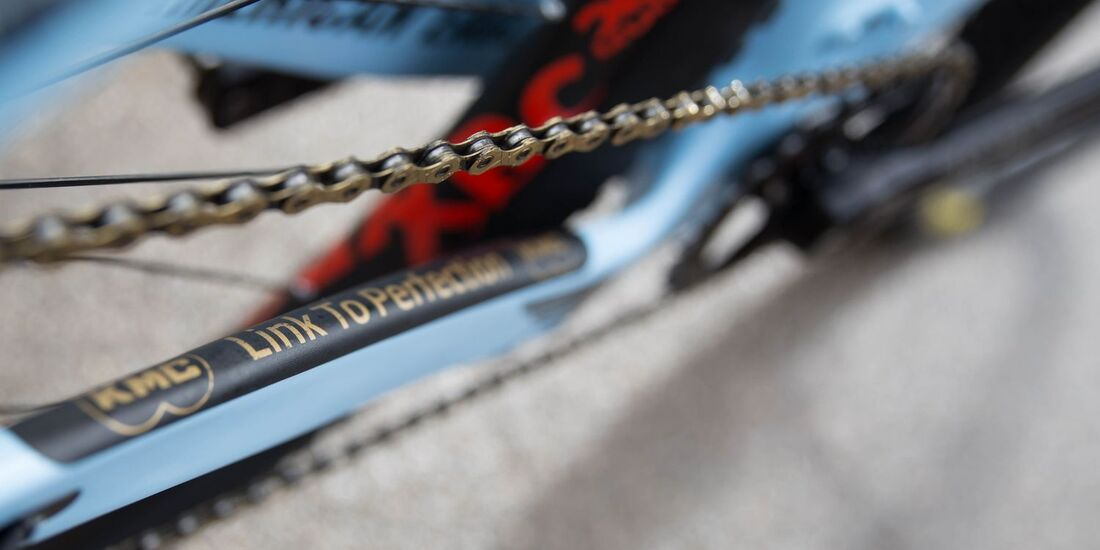 MB WC Albstadt World Cup Bikes 2018 Belomoina Kettenstrebe Detail